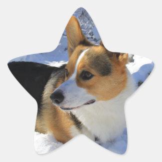Welsh Corgi Snow Day Star Sticker