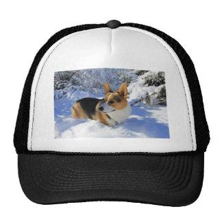 Welsh Corgi Snow Day Trucker Hat