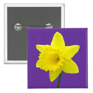 Welsh Daffodil - II - Square Pinback Button