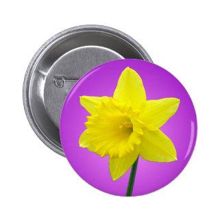 Welsh Daffodil - III - Round Pinback Button