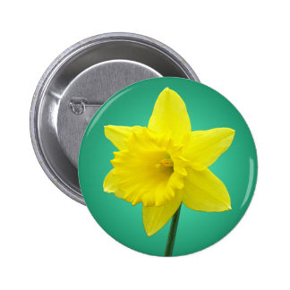 Welsh Daffodil - IV 2 Inch Round Button