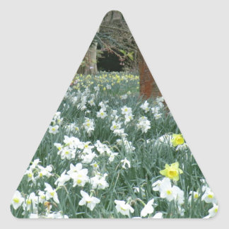 Welsh Daffodil Patch Triangle Sticker