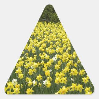 Welsh daffodils, Cymru am byth Triangle Sticker