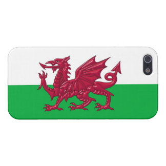 Welsh Dragon Flag iPhone 5 Cover