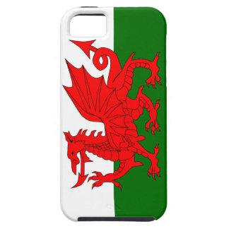Welsh Dragon Flag iPhone SE/5/5s Case