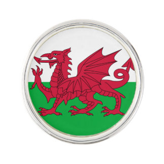 Welsh dragon flag pin