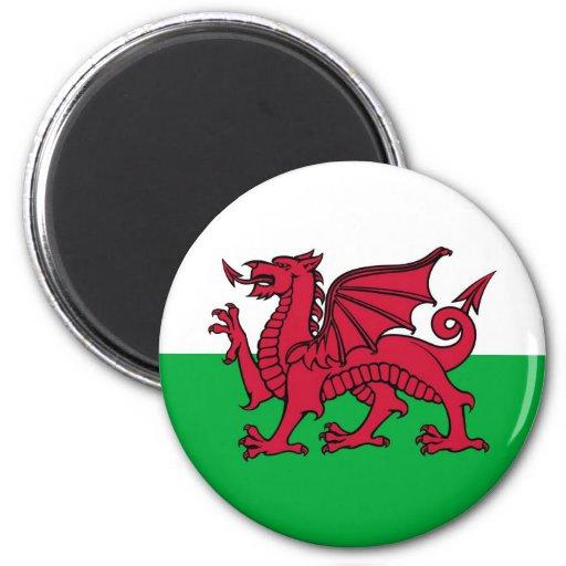 Welsh Dragon Refrigerator Magnet