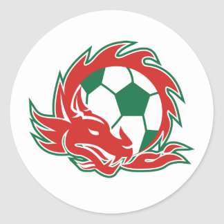 Welsh Dragon Soccer Ball Classic Round Sticker