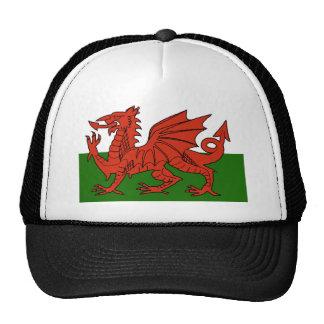 Welsh Flag Mesh Hats