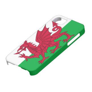 Welsh Flag iPhone 5 Case