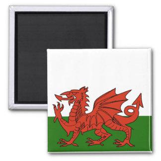 Welsh Flag Magnet