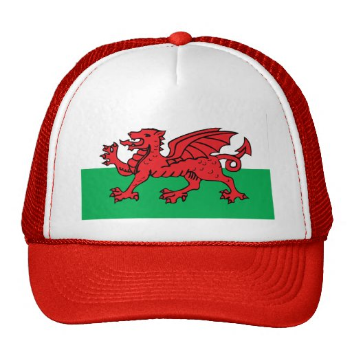 Welsh Flag Mesh Hat