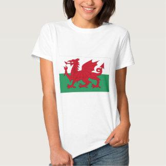 Welsh Flag T Shirt