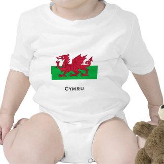 Welsh Flag Tshirt