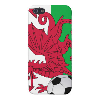 Welsh Flag with Soccer Ball  Case For iPhone SE/5/5s