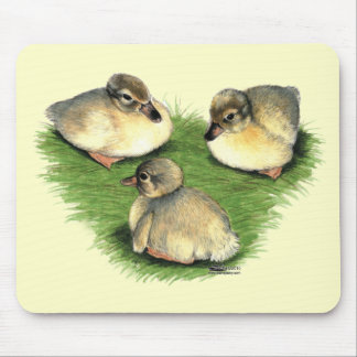 Welsh Harlequin Ducklings Mouse Pad