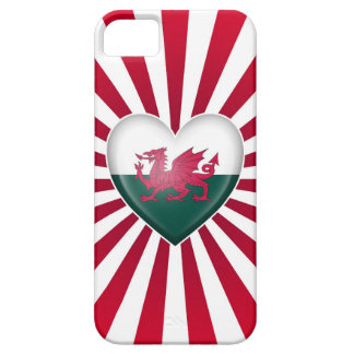 Welsh Heart Flag with Star Burst iPhone 5 Cover