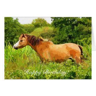 WELSH MOUNTAIN PONY CARD