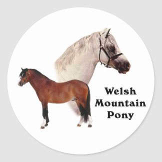 Welsh Mountain Pony Stickers