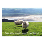 WELSH MOUNTAIN SHEEP 5X7 PAPER INVITATION CARD