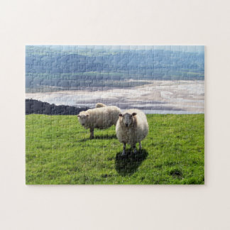 WELSH MOUNTAIN SHEEP JIGSAW PUZZLE
