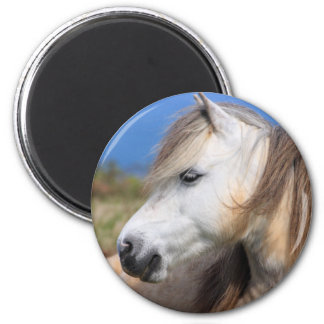 Welsh Pony 2 Inch Round Magnet