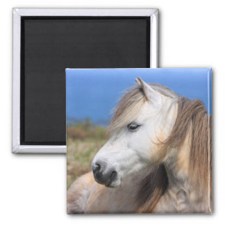 Welsh Pony 2 Inch Square Magnet
