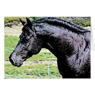 Welsh Pony Black Horse Head Ink Drawing Art Card
