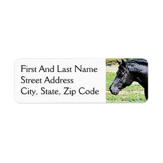 Welsh Pony Black Horse Head Ink Drawing Art Custom Return Address Label