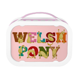 Welsh pony for girls lunch box