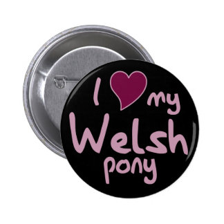 Welsh pony pinback button