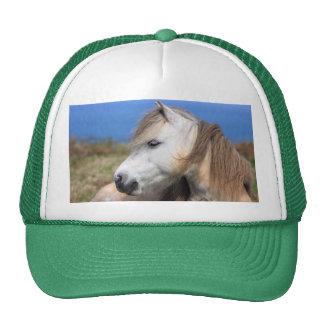 Welsh Pony Trucker Hat