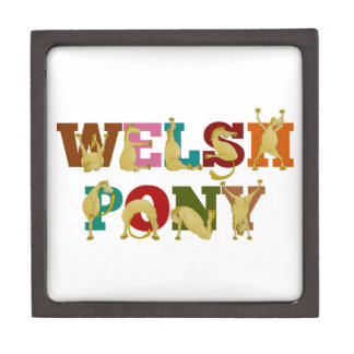 Welsh Pony with colorful text Jewelry Box