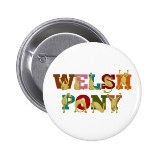 Welsh Pony with colorful text Pinback Button