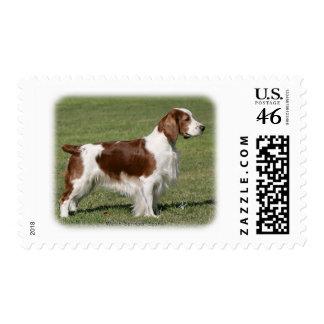 Welsh Springer Spaniel 9Y394D-041 Postage Stamps