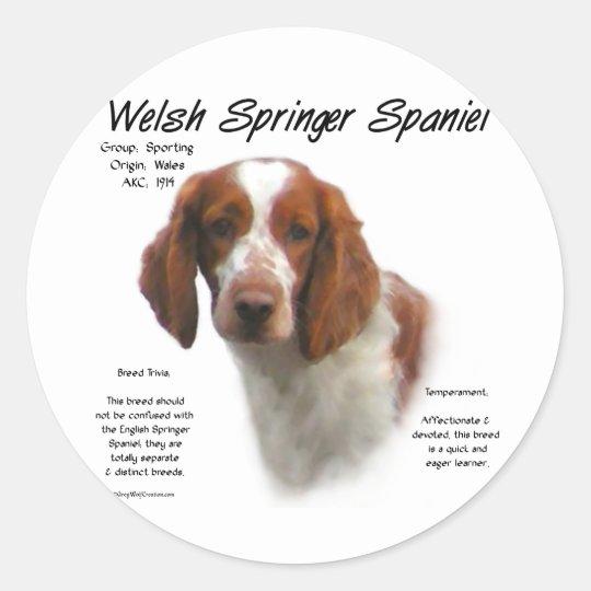 Welsh Springer Spaniel History Design Classic Round Sticker