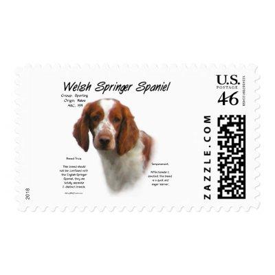 Welsh Springer Spaniel History Design Stamp from Zazzle.