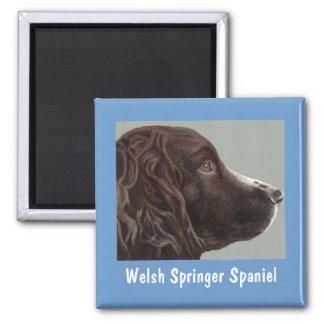 Welsh Springer Spaniel magnet