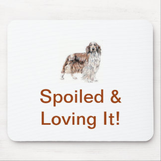 Welsh Springer Spaniel Mouse Pad