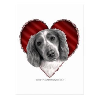 Welsh Springer Spaniel with Heart Postcard