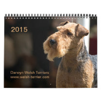 Welsh Terrier 2015 Calendar by Darwyn