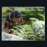 "Welsh Terrier 2017 Calendar by Darwyn<br><div class=""desc"">2017 (15 month) calendar with photos taken by us of our Darwyn Welsh Terrier puppies!  See more about our dogs at www.welsh-terrier.com (or Facebook!)</div>"