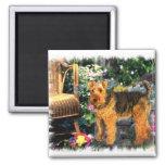 Welsh Terrier Art Gifts Magnet