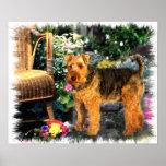 Welsh Terrier Art Print