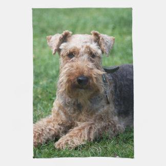 Welsh Terrier dog beautiful cute kitchen tea towel