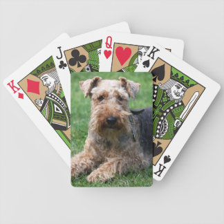 Welsh Terrier dog cute beautiful photo, gift Bicycle Playing Cards