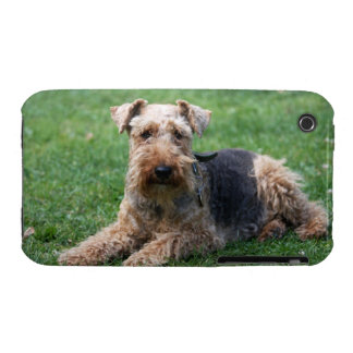 Welsh Terrier dog photo iphone 3G case mate barely