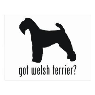 Welsh Terrier Post Card