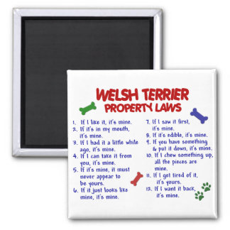 WELSH TERRIER Property Laws 2 2 Inch Square Magnet