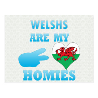 Welshs are my Homies Postcard